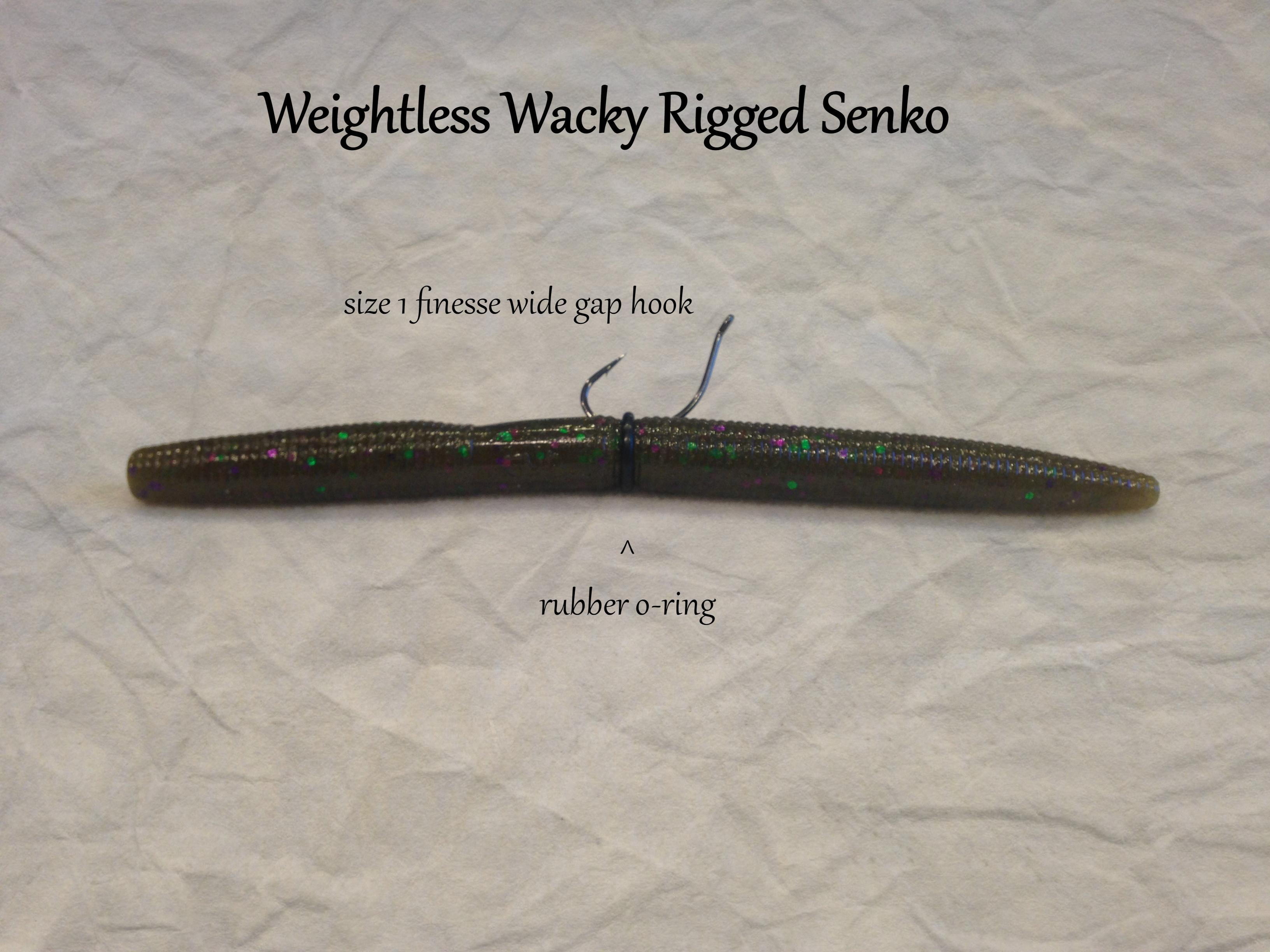 wacky rigged senko