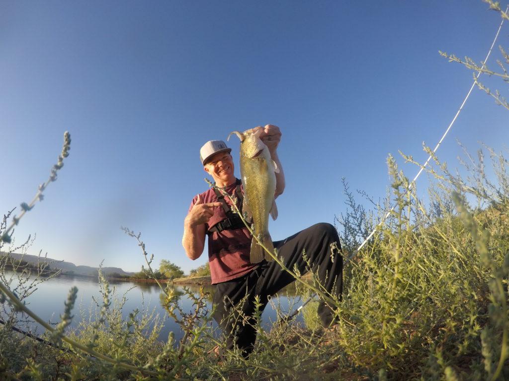 bass fishing thick grass