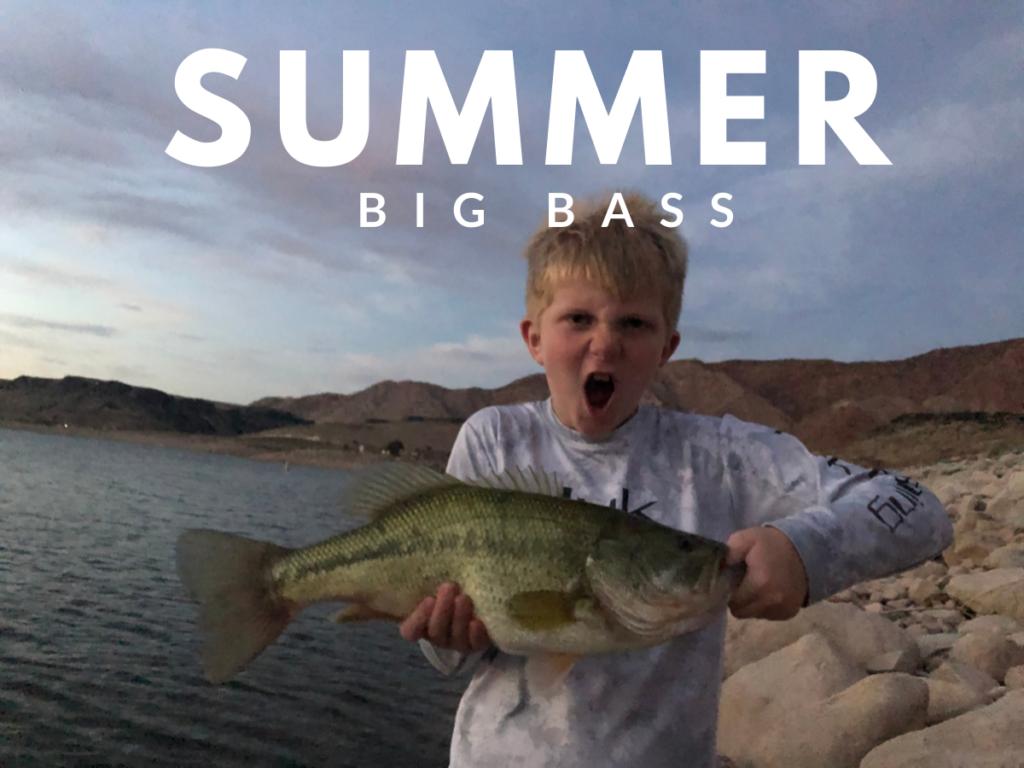 bass fishing summer